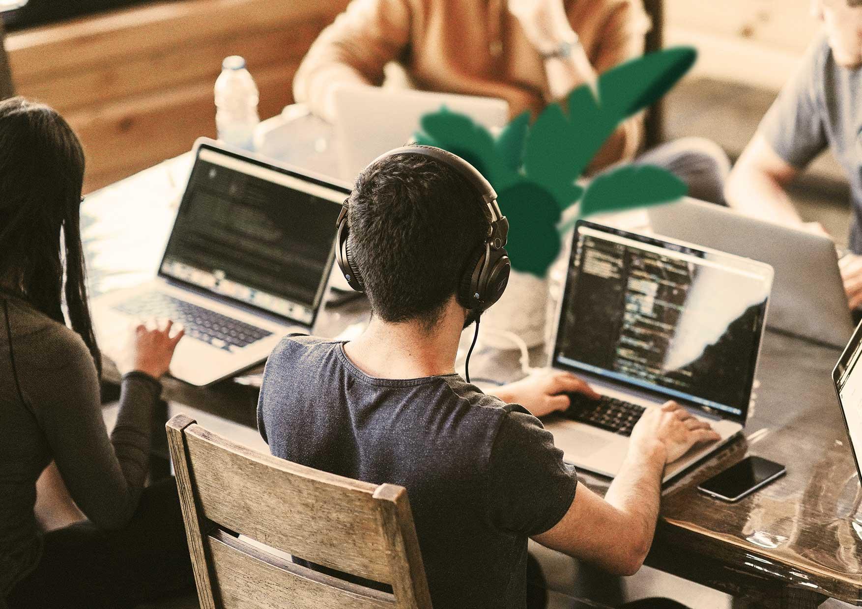 Wir programmieren für Sie im ABAP und COBOL Umfeld